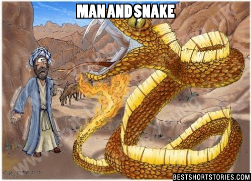 A man saw when a snake was dying burned and decided to take it out of the fire, but when it did, the snake bit him. By the reaction of pain, the man released her and the animal fell back into the fire and was burning again. The man tried to pull it out again and again the snake bit him. 